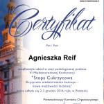 certyfikat-sesja-podologiczna_stopa-cukrzycowa-2016