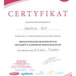 certyfikat-odciazenia-iconic-2016