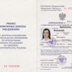 Prawo Wykonywania Zawodu Pielęgniarki PrzyjacielStop 1996