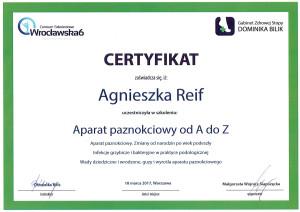 Certyfikat Aparat paznokciowy od A do Z 2017